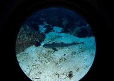 潜水艦から観る風川奈ボートポイント_b0163039_15262380.jpg