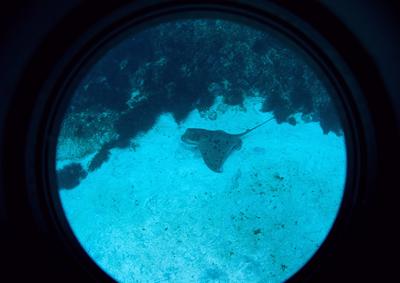 潜水艦から観る風川奈ボートポイント_b0163039_15264448.jpg