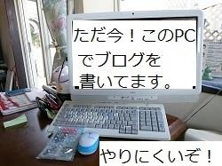 d0306248_15050189.jpg