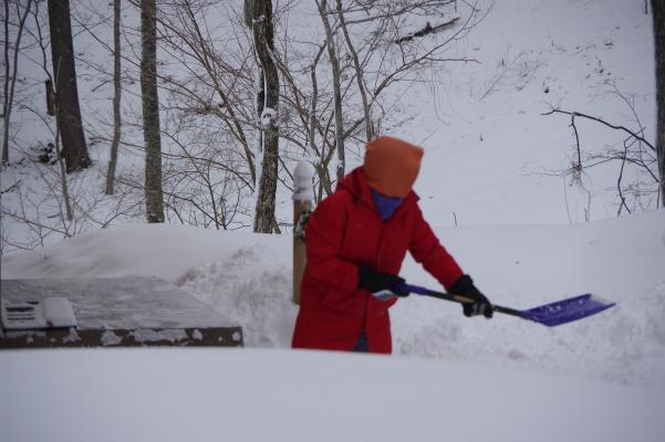 目標は「夫と一緒に雪掻きをする」_c0341450_08542918.jpg