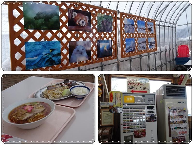 旭山動物園でランチ:雪の村_b0236665_07012940.jpg