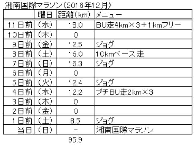 静岡マラソンまでの調整プラン_f0310282_19385687.png