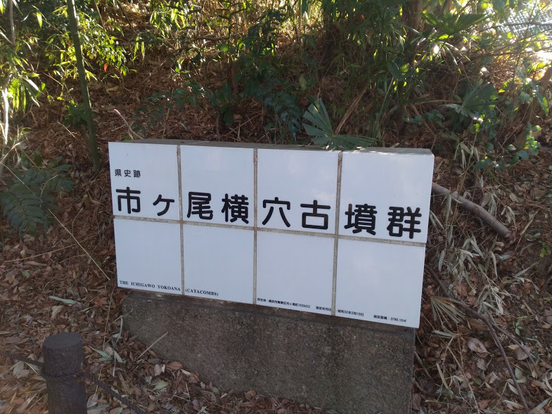 1/31 丹沢遠望と古墳の現場_e0029584_16462538.jpg