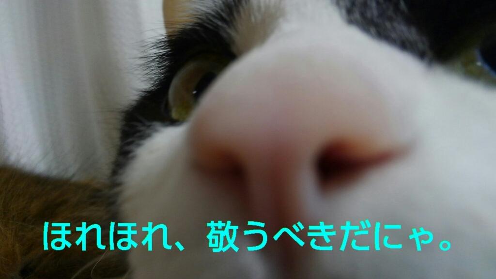 c0181639_21293232.jpg