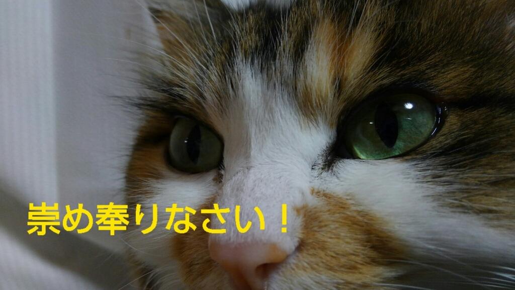 c0181639_21293634.jpg