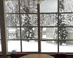 再び、雪、、、。_d0050155_10253263.jpg