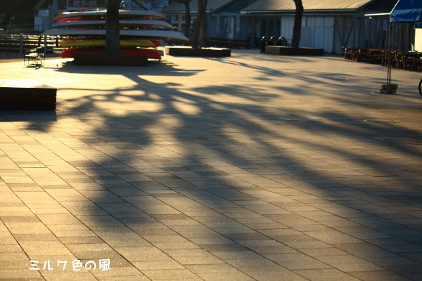 c0368870_20124473.jpg