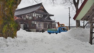 雪が足らない!_c0336902_19595438.jpg