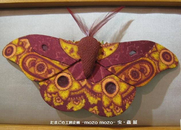 たまごの工房 企画展 「-mozo mozo-虫・蟲 展」 その9   _e0134502_18464056.jpg