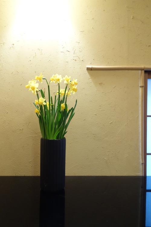 野に咲く水仙のごとく_a0197730_10551212.jpg