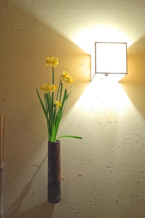野に咲く水仙のごとく_a0197730_10554060.jpg