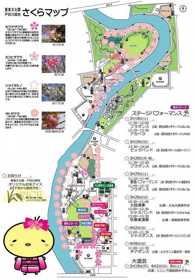 戸田川緑地 さくらまつり~コンサート編~_f0373339_11504992.jpg