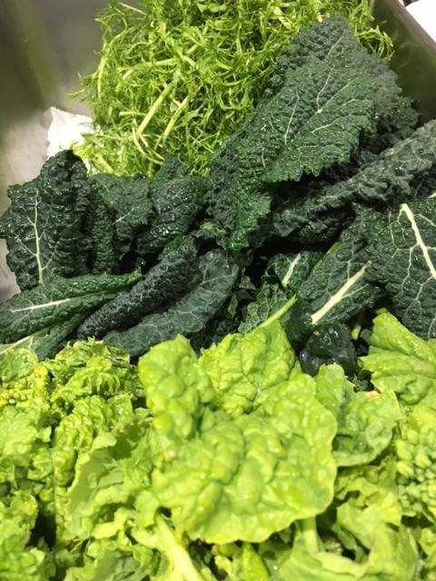 春三番  新しい言葉か?  こんな陽気で 畑で写真が撮れず・・店内で洗った野菜を撮影です_c0222448_13274541.jpg