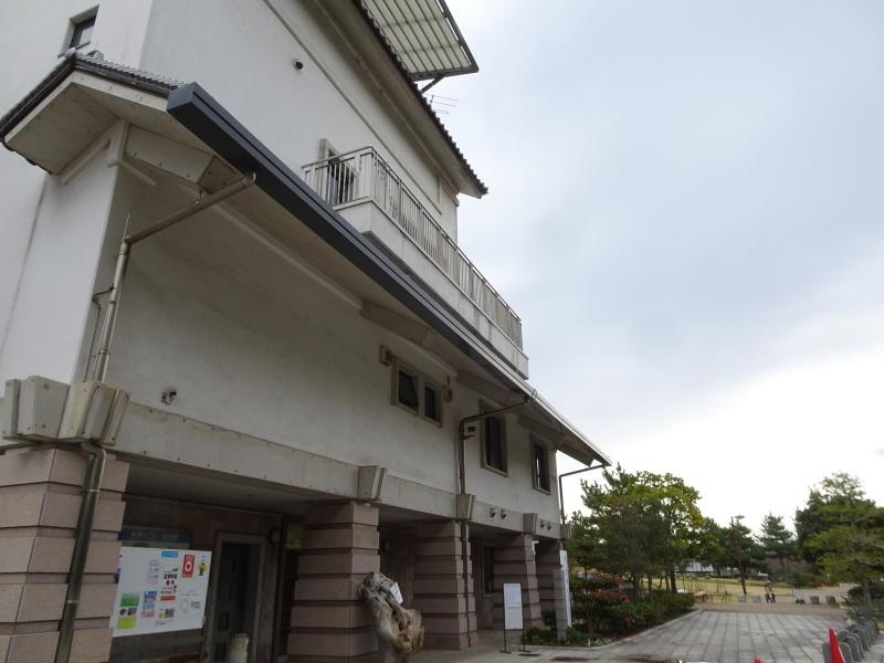 「しおさい楽習館」完成間近・・・せんなん里海公園_c0108460_20391801.jpg