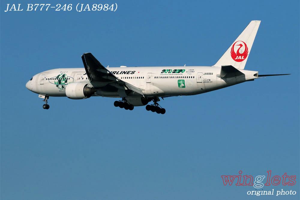 '17年 川崎・浮嶋公園レポート ・・・ JAL/JA8984_f0352866_1675472.jpg