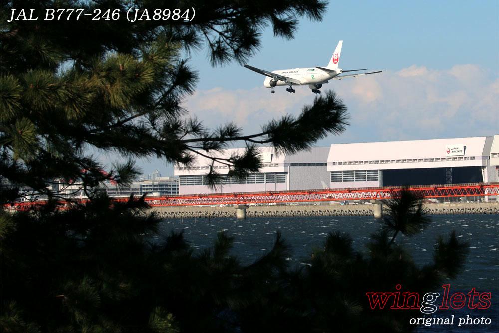 '17年 川崎・浮嶋公園レポート ・・・ JAL/JA8984_f0352866_1681689.jpg
