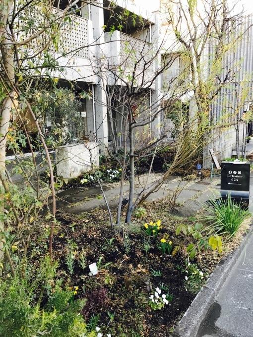 Keyaki Garden 0216_b0167282_00545251.jpg