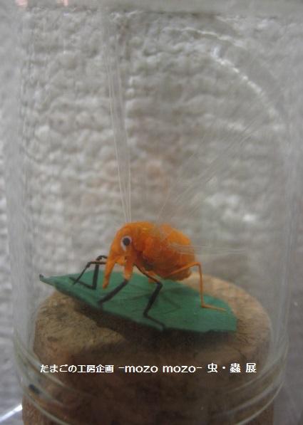 たまごの工房 企画展 「-mozo mozo-虫・蟲 展」 その10   _e0134502_185577.jpg