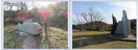 今治市大角海浜公園の水仙と河津桜と多くの種類の春の雲…2017/2/18_f0231709_18213114.png