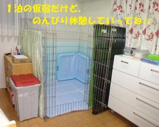 f0121712_08125410.jpg