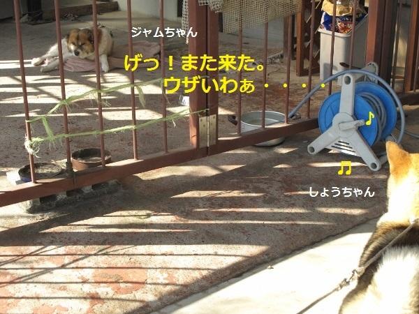f0143123_09234353.jpg