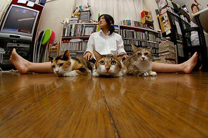 猫の日ミルクさん祭【3/2写真追加】_a0028451_03022965.jpg