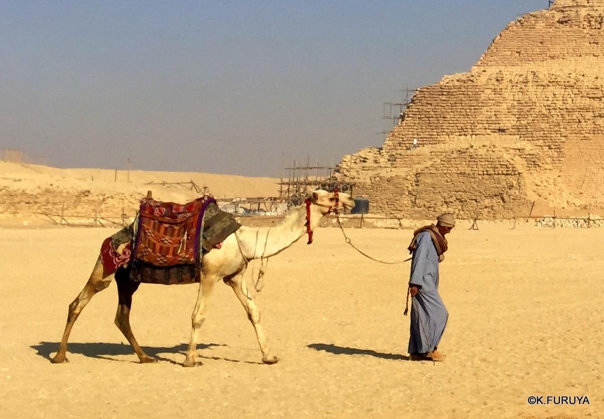 """エジプト史最古の史跡を訪ねて  \""""サッカラ\""""_a0092659_21572435.jpg"""