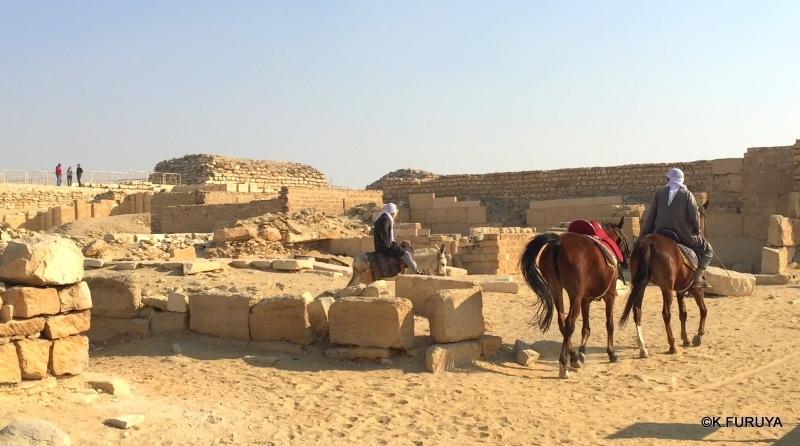 """エジプト史最古の史跡を訪ねて  \""""サッカラ\""""_a0092659_22045809.jpg"""