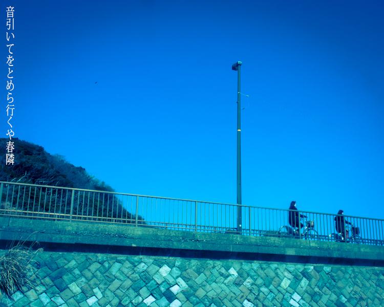 海沿いの道。_b0022268_20352709.jpg