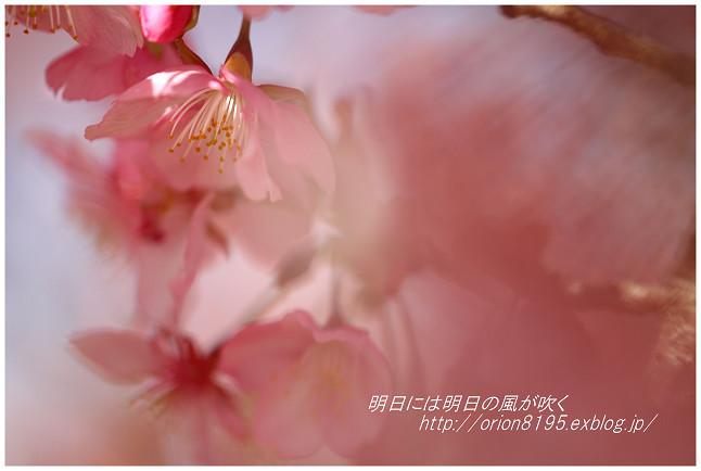 f0361079_15463673.jpg