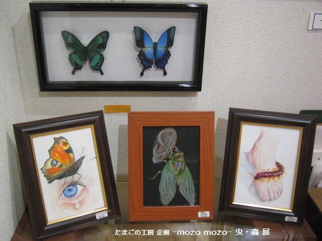 たまごの工房 企画展 「-mozo mozo-虫・蟲 展」 その11 _e0134502_20545049.jpg