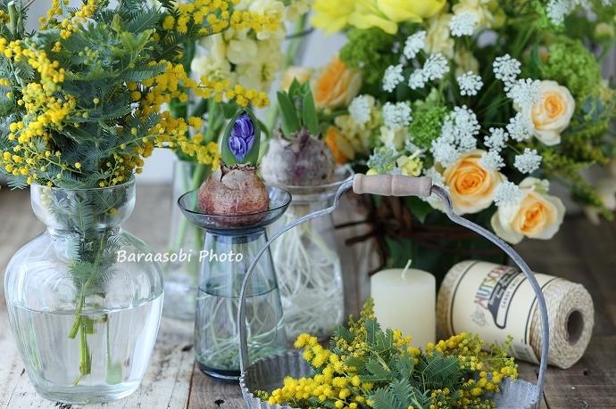 ミモザで迎える春 2_a0135366_0232410.jpg