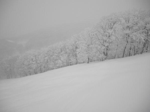 蔵王温泉スキー場_a0351368_23051841.jpg