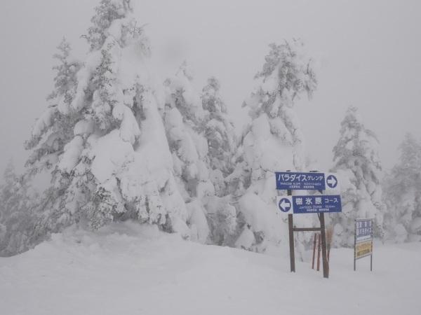 蔵王温泉スキー場_a0351368_23060708.jpg