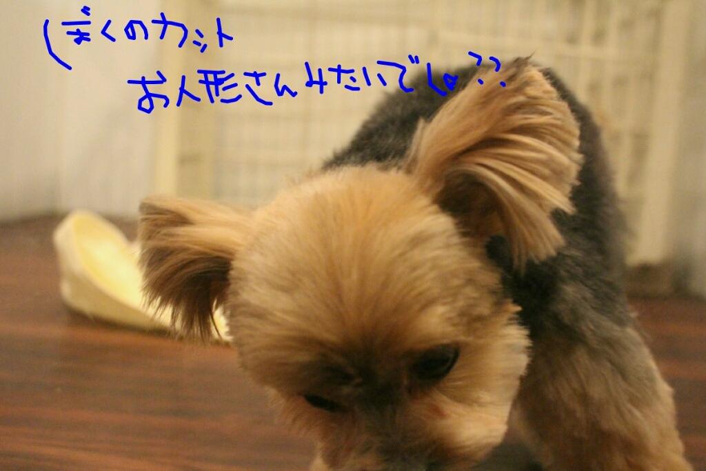 b0130018_22102667.jpg