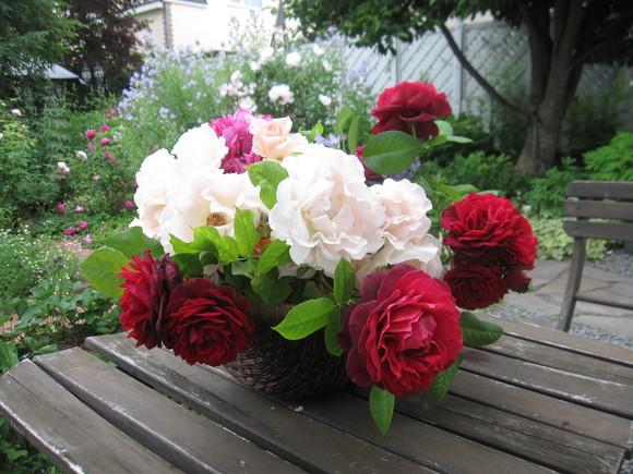 お庭が薔薇で綺麗になってきた~_a0279743_19145581.jpg