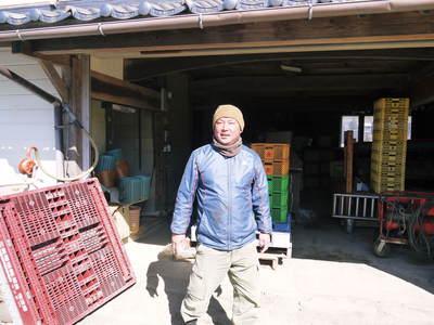 山鹿のみかん 社方園 平成30年度からのに向け、貯蔵と出荷の様子を取材してきました_a0254656_18561864.jpg