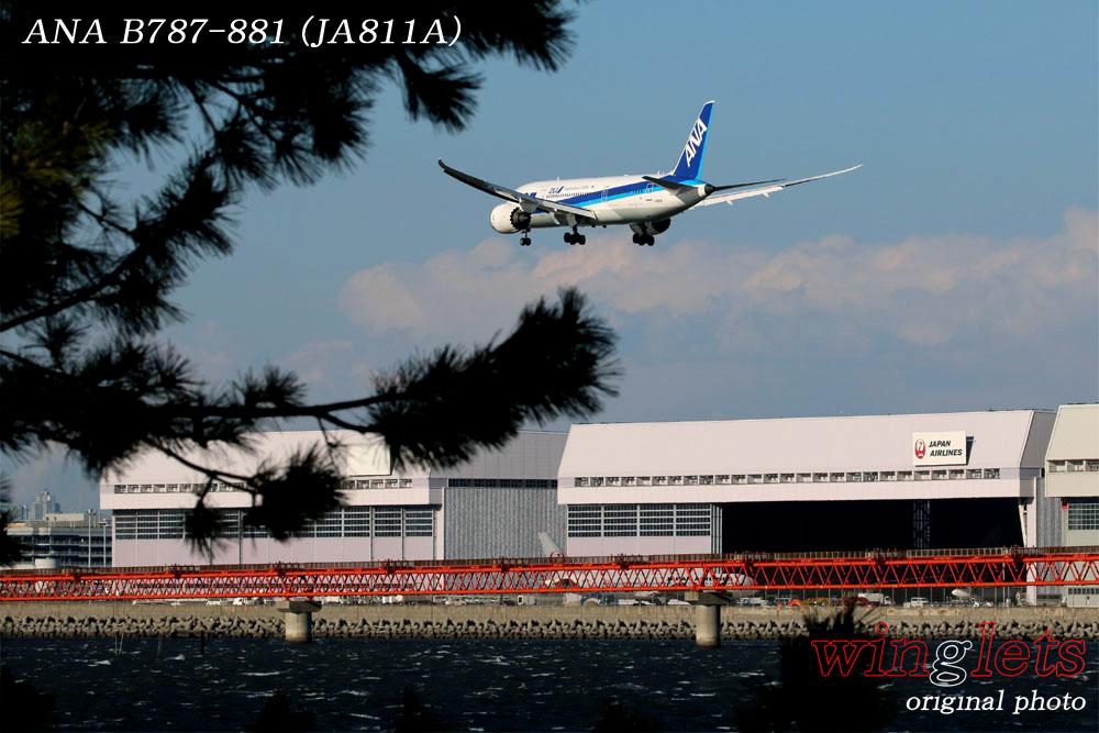 '17年 川崎・浮嶋公園レポート ・・・ JAL/JA811A_f0352866_1610152.jpg
