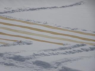雪まつり_d0122374_8143684.jpg