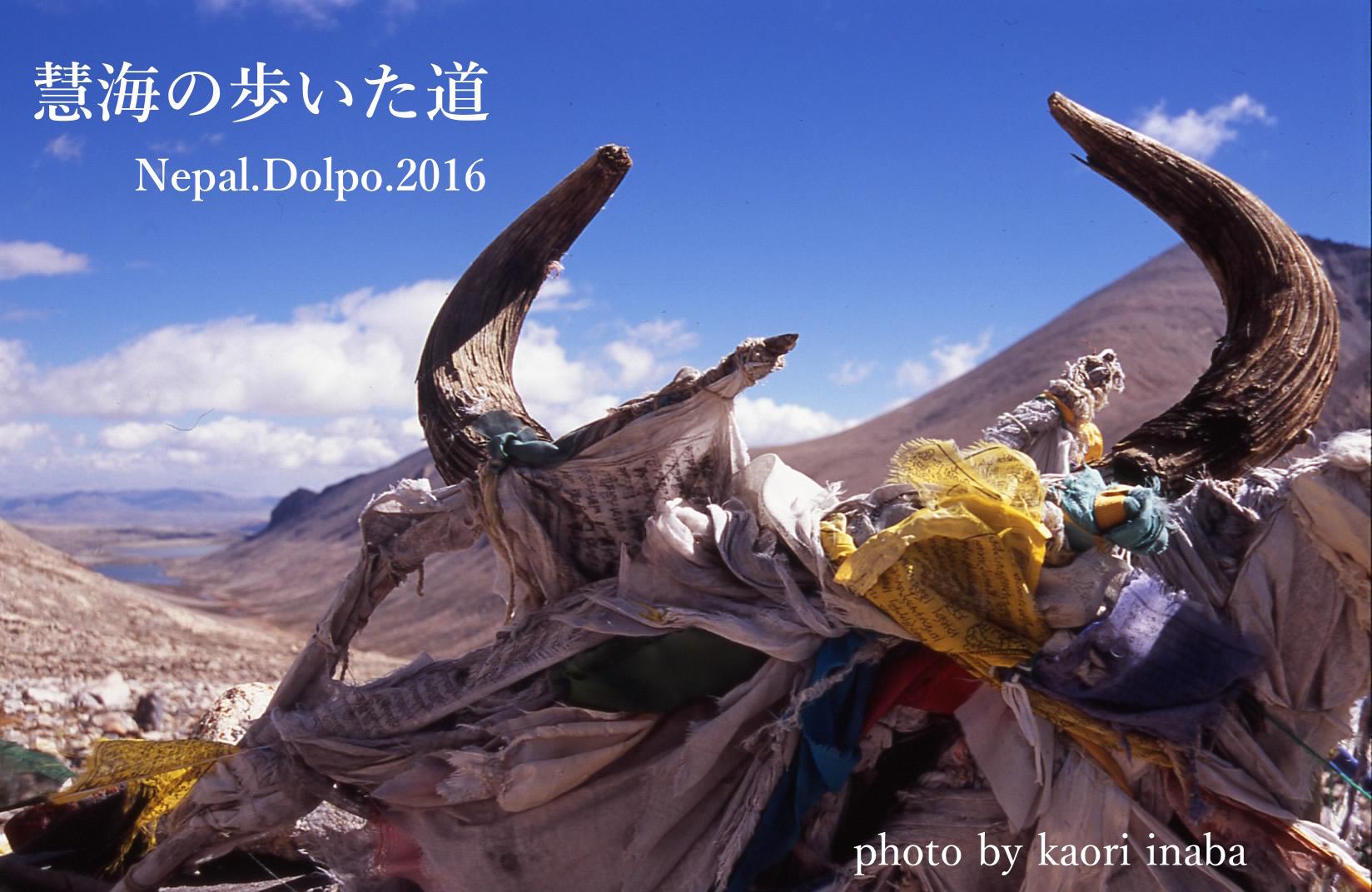 第14回新日本ヒマラヤ会議!_e0111396_059589.jpg