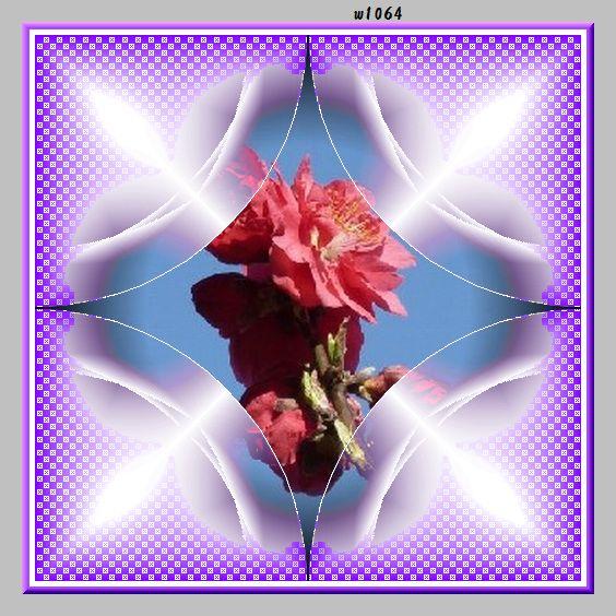 f0132006_9481123.jpg