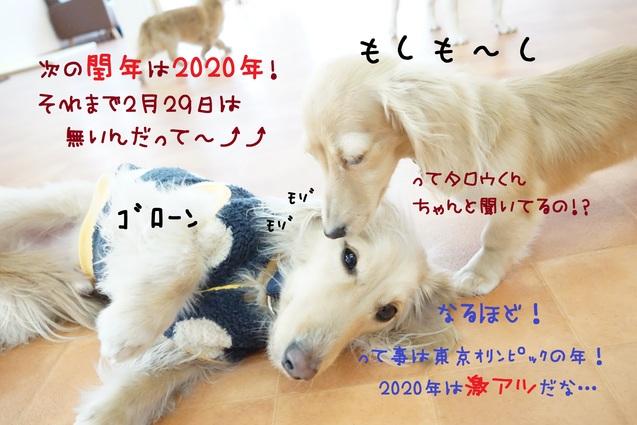 d0220513_13581029.jpg