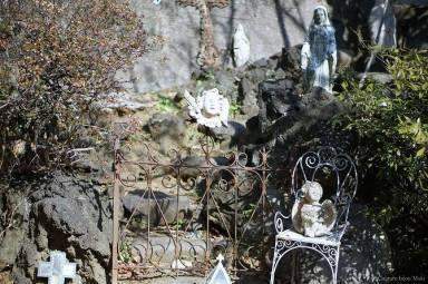 わたしの庭  * ひみつの花園_c0203401_14294234.jpg