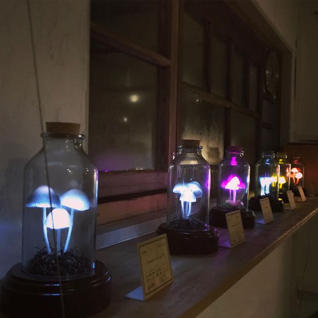 きのこランプの高野幸雄さんの個展へ行ってきました。_d0014014_0411642.jpg