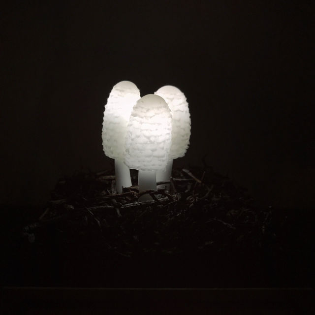 きのこランプの高野幸雄さんの個展へ行ってきました。_d0014014_041356.jpg