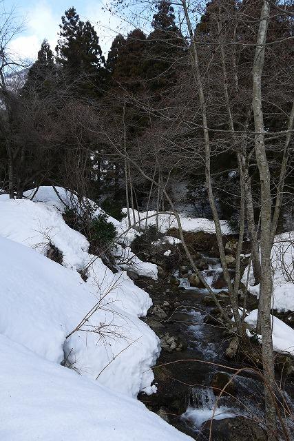 雪のマキノ高原へ_a0233896_16575986.jpg