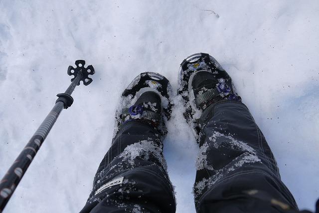 雪のマキノ高原へ_a0233896_16592952.jpg
