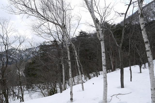 雪のマキノ高原へ_a0233896_1701459.jpg