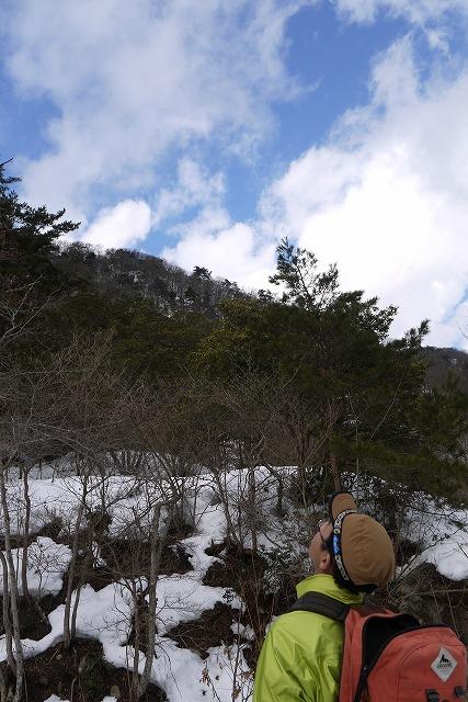 雪のマキノ高原へ_a0233896_1735020.jpg