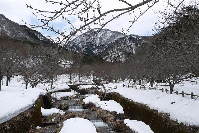 雪のマキノ高原へ_a0233896_1775584.jpg